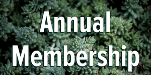 Annual Membership Button
