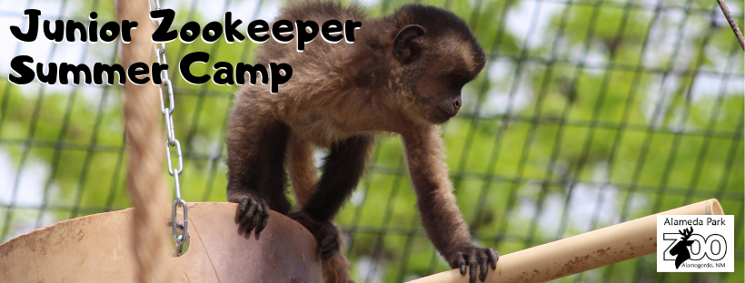 Junior Zookeeper Web photo