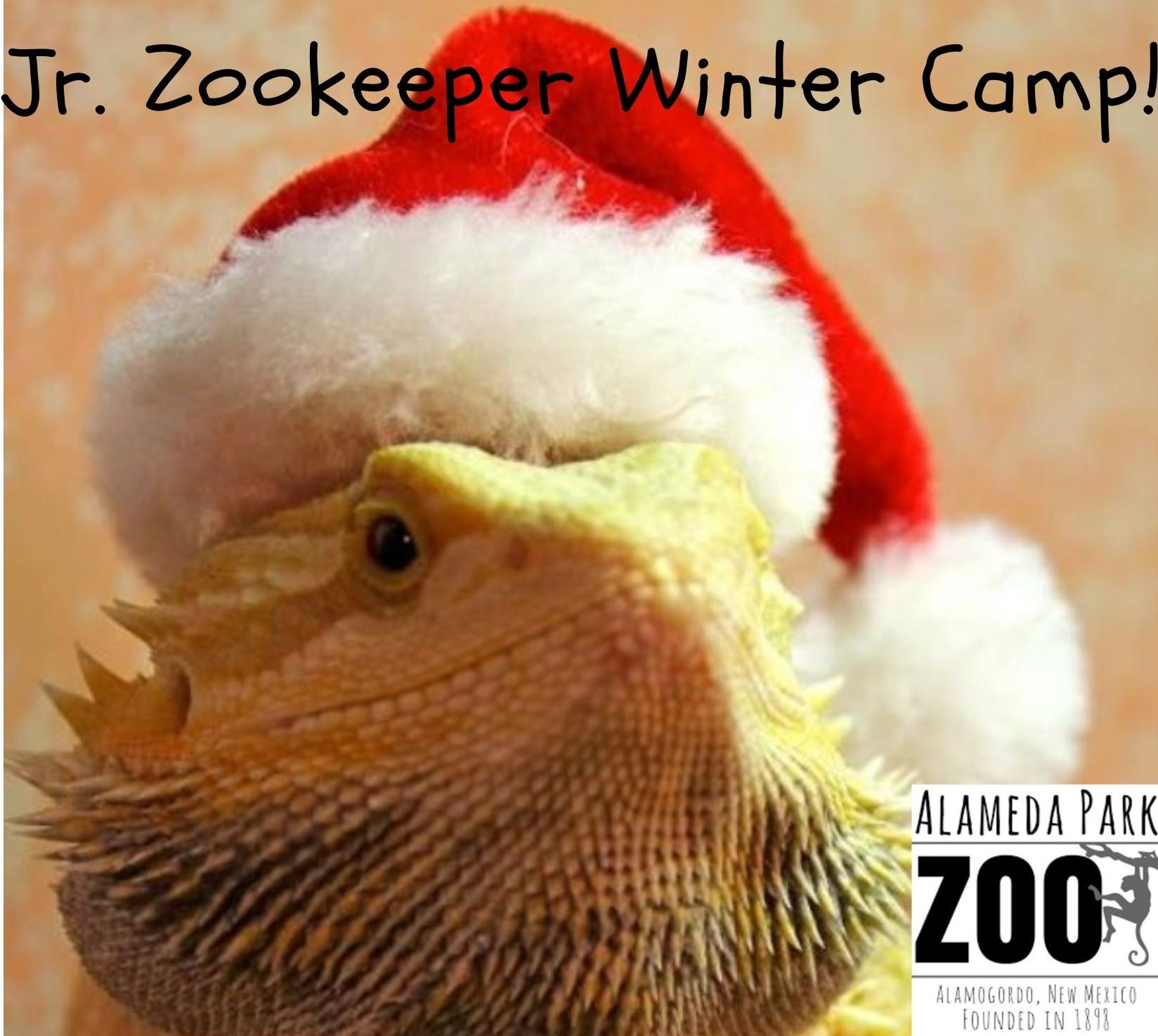 Jr. Zookeeper Winter Camp! (2)
